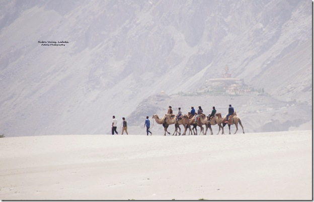 Ladakh176