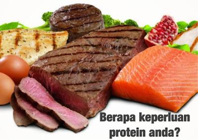 protein esp, awet muda, shaklee, otot, imun, kulit, jerawat, jeragat, hamil, mengandung, menyusu, berpantang