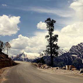 by Jatin Malhotra - Landscapes Mountains & Hills ( hills, kullu, snow, rohtang, road )
