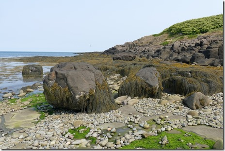 ca_parkers_cove_digby_neck_bck