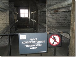 Auschwitz, Birkenau 021