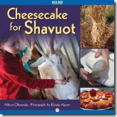 Cheesecake for Shavuot, by Allison Ofanansky