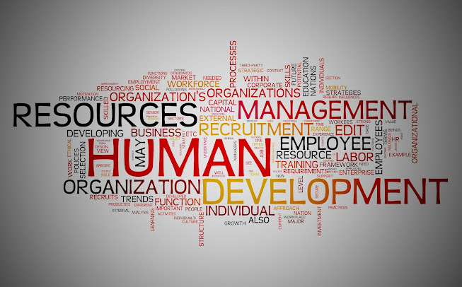 human resource management and employee