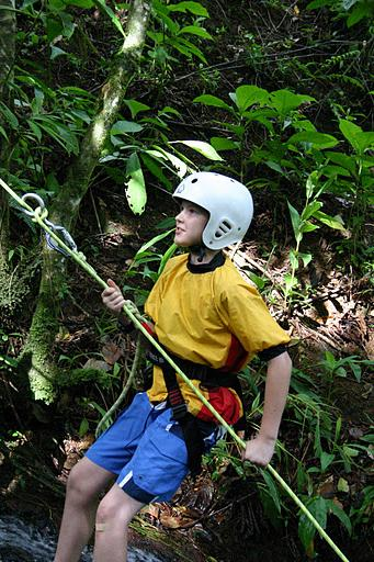 Kulps in the Rainforest