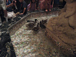 March of the Peabody ducks at the Peabody Hotel in Memphis TN 07202012-11