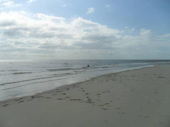 Praia do Rato - Sao Caetano de Odivelas, fonte: Soccorro Fernandes