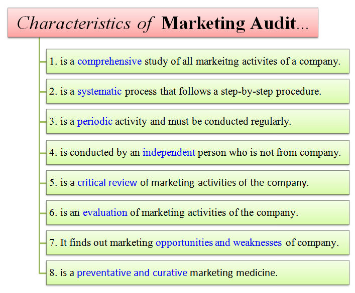 characteristics of marketing audit