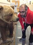 psst....hey bear!