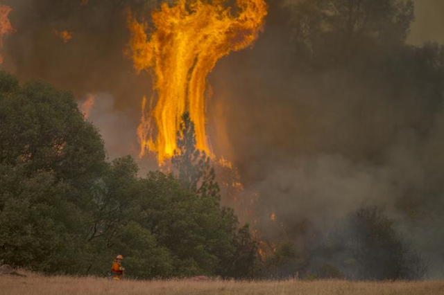 Tall flames rise behind a firefighting inmate hand crew member near San Andreas, California, 13 September 2015. Photo: David McNew / Getty Images