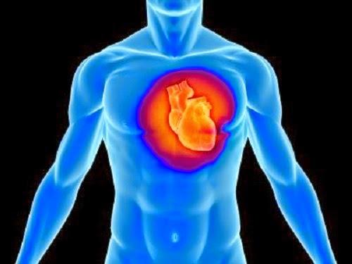 Subhanallah Inilah Rahsia Jantung Manusia