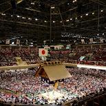 gaint stadium of the Ryogoku Kokugikan sumo ring in Tokyo in Tokyo, Tokyo, Japan