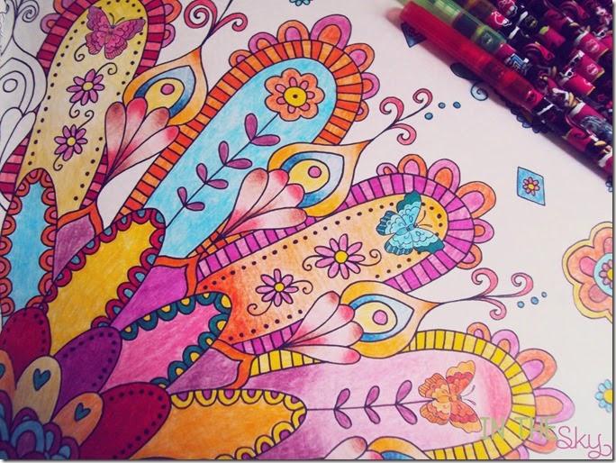 livros de colorir01