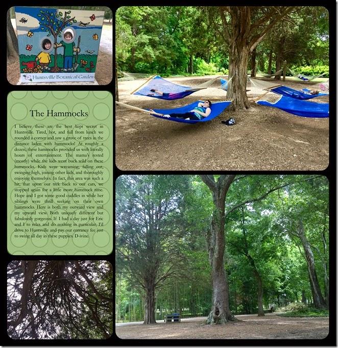 hbot hammock 1