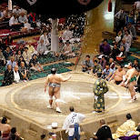 Ryogoku Kokugikan sumo ring in Tokyo in Tokyo, Tokyo, Japan
