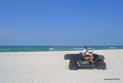 Bryce drove me down to the beach on the gator