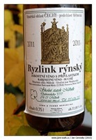 ryzlink-rynsky-kabinet-2011-skolni-statek-melnik