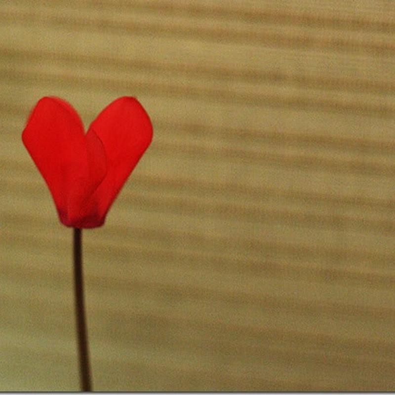 Dragostea: singura forță creatoare
