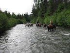 A cool creek crossing provides a quick refresher for horse and rider