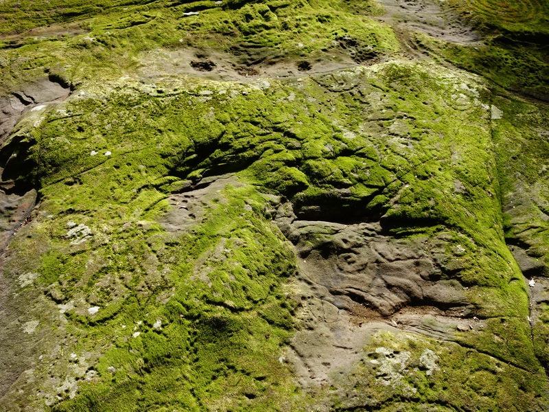 2014_0101-0105 萬山神石、萬山岩雕順訪萬頭蘭山_0788