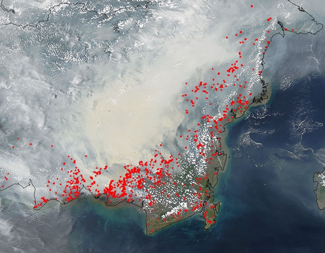 Smoke and forest fires in southern Borneo, 19 October 2015. Photo: LANCE MODIS Rapid Response