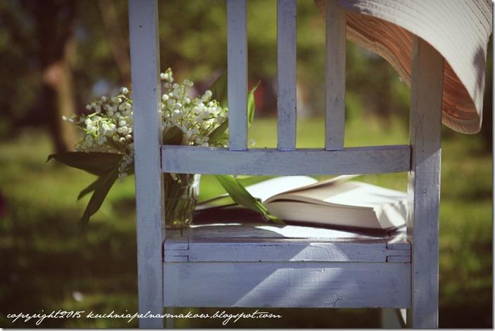 książka w ogrodzie (4)