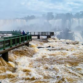 Iguacu Falls by Bob Lindop - Landscapes Waterscapes ( argentina, brazil, cataract, iguacu falls )