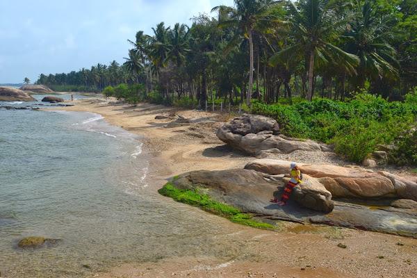 Слоновий залив, Пассекудах, Шри Ланка