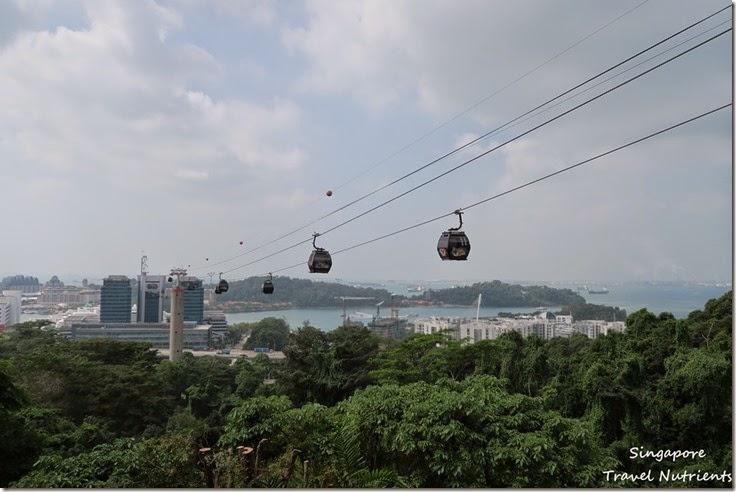 新加坡花柏山 (17)