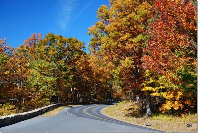 10-23-15 A Skyline Drive Shenandoah NP (8)