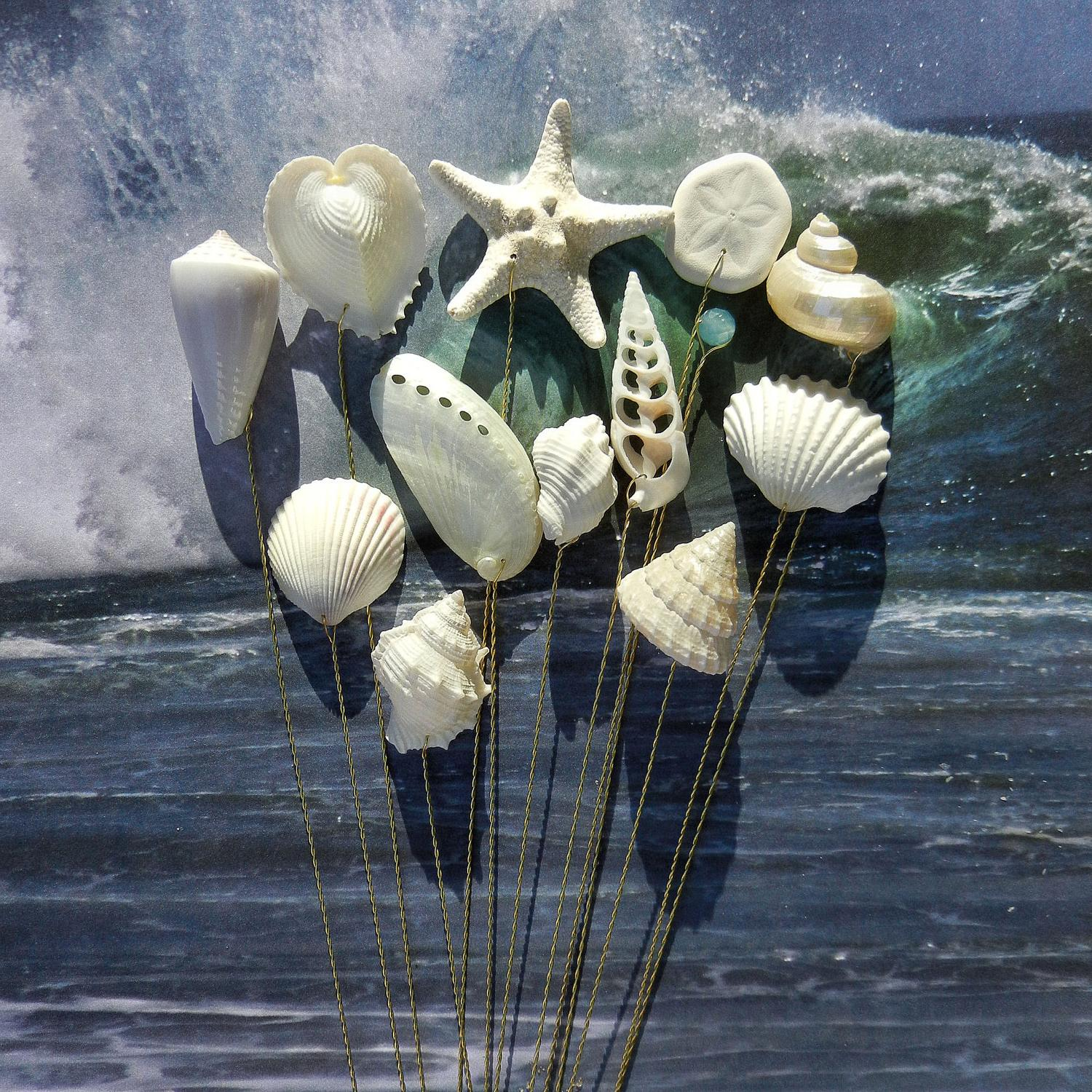 Seashells - 12 Stems for