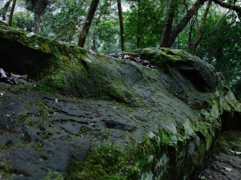 2014_0101-0105 萬山神石、萬山岩雕順訪萬頭蘭山_0479