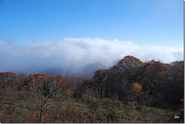 10-23-15 A Skyline Drive Shenandoah NP (76)