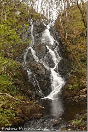 15-Waterfall-Wood-of-Cree