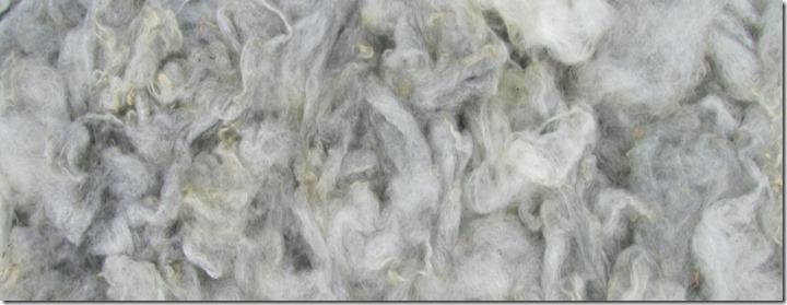 Wolle gewaschen 2