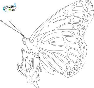 monarch butterfly coloring pages - Monarch Butterfly Coloring Page Science for Kids