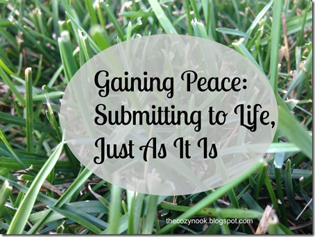 Gaining Peace Submitting to Life, Just As It Is
