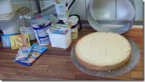 Heidelbeer-Swirl-Torte