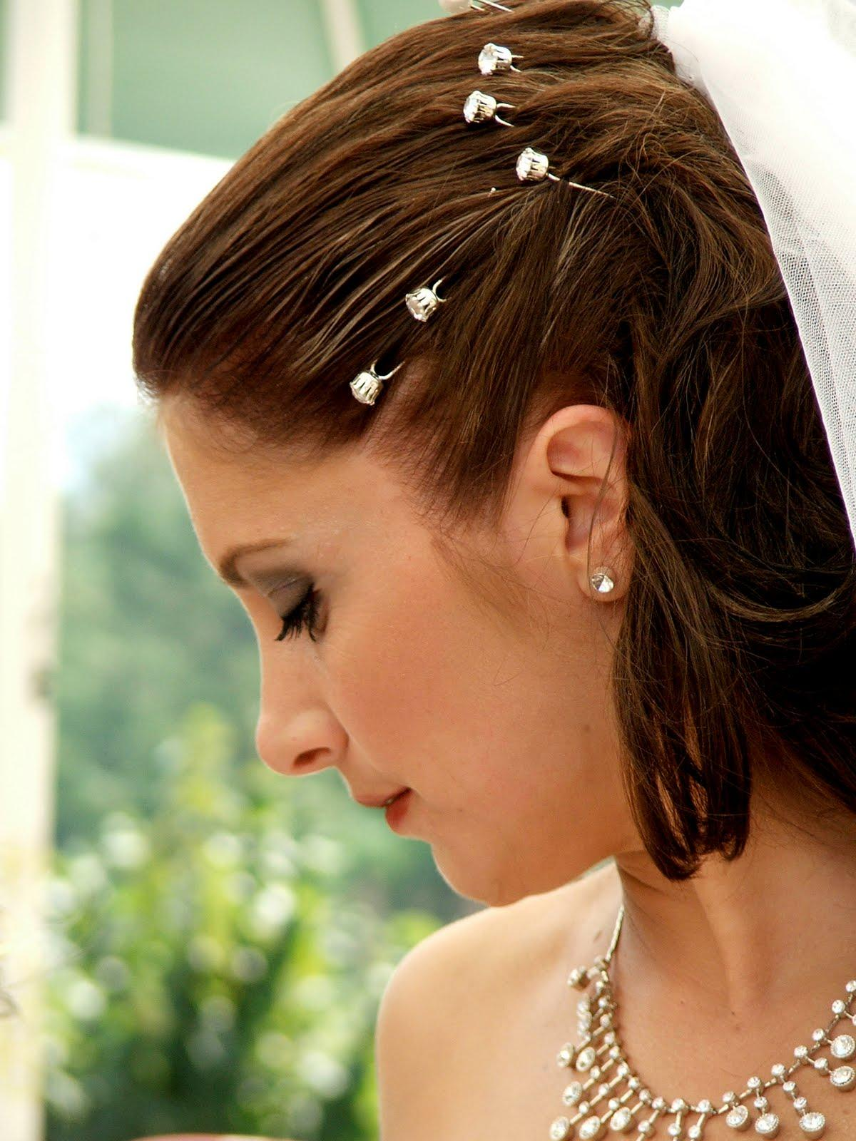 Wedding hairstyles 2011 with veil