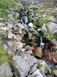 Sourmilk Gill