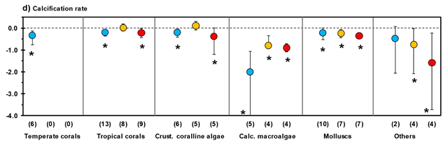 Mean effect sizes and direction of impacts of ocean acidification (OA) (blue) and ocean warming (T) (orange) and their combined effects (OA × T) (red) for various categorical effects. ... (D) Calcification rates of several species groups. Error bars represent 95 percent confidence intervals. Numbers between brackets indicate sample size (number of experiments). *P ≤ 0.05. Graphic: Nagelkerken and Connell / 10.1073/pnas.1510856112