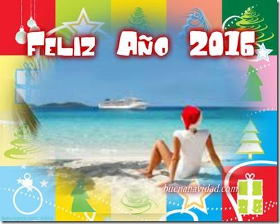 navidad tropical 2016 7