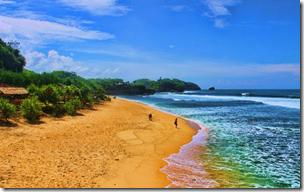 Tempat Wisata Pantai Watu Kodok yang Tersembunyi dan Aneh