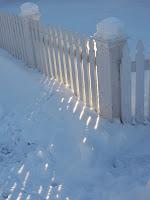 Adams St Fence