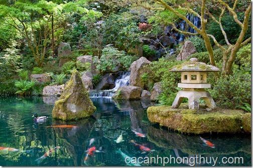 Hồ koi sân vườn với thác nước và kiến trúc cung đình cổ, trong hồ là những chú cá koi với màu sắc sặc sỡ.