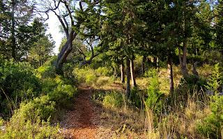 Dhermi - a path along the beach