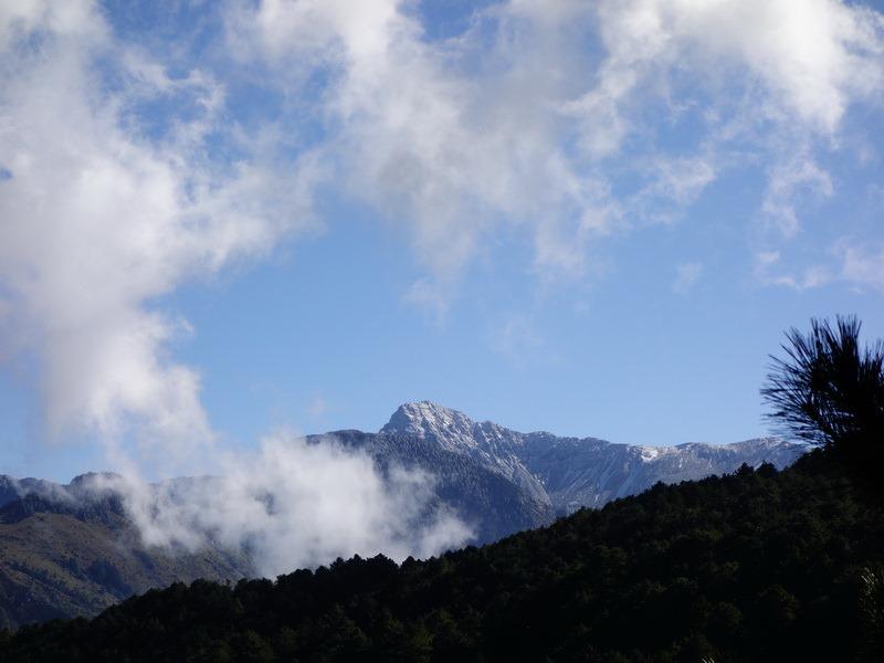 2013_1126-1129 鹿林山-1_266