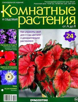 Комнатные и садовые растения от А до Я №24 2014