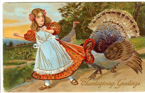 Thanksgiving girl & turkey