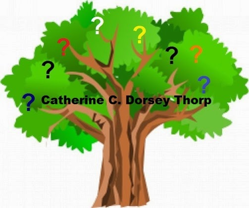 Green tree with question marks_Catherine Dorsey