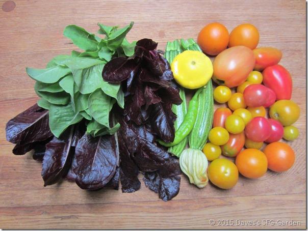lettuce&tomatoes